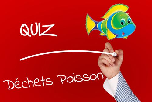 Quiz Déchets Poisson