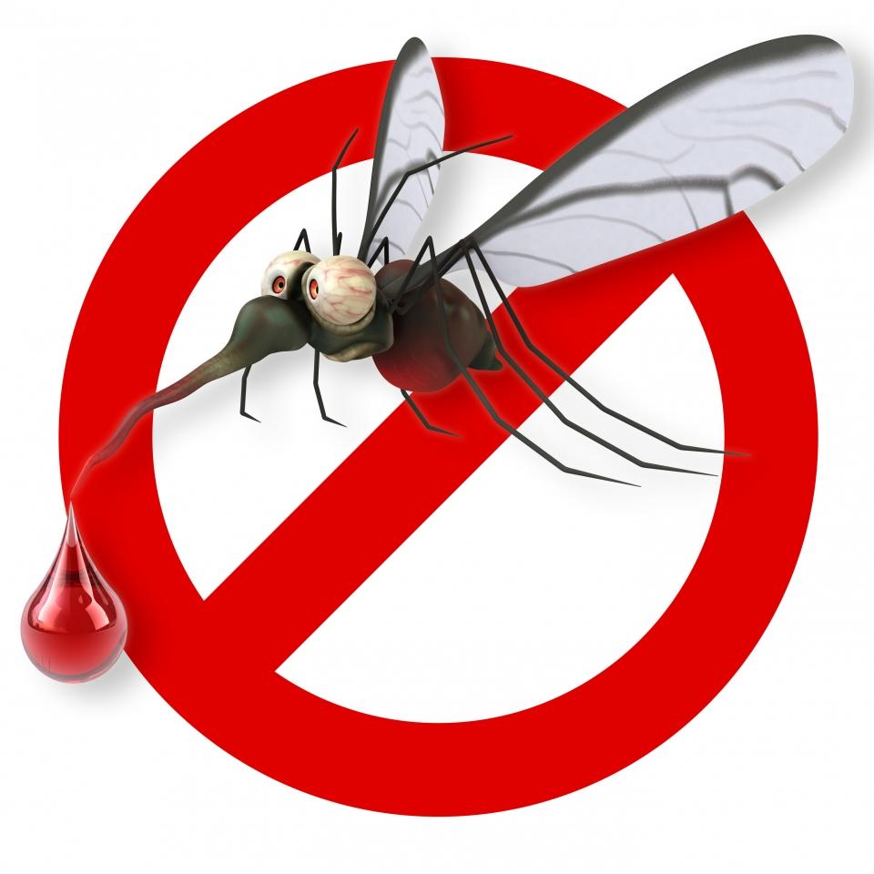 Op rations de d moustication sur l ermitage la mi juin - Lavande contre moustique ...